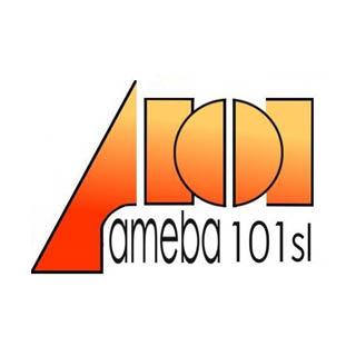 AMEBA 101 - METALMADRID 2019